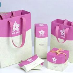 Mua túi giấy đựng quà ở đâu Hà Nội?